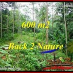 Exotic PROPERTY 600 m2 LAND FOR SALE IN Ubud Tampak Siring TJUB493