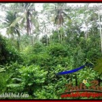 Magnificent PROPERTY 600 m2 LAND IN Ubud Tampak Siring FOR SALE TJUB493