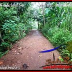 Affordable LAND SALE IN Ubud Tampak Siring BALI TJUB493