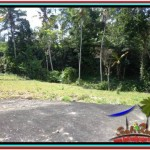 Affordable PROPERTY LAND SALE IN Ubud Tampak Siring TJUB511