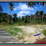 Beautiful PROPERTY LAND IN Ubud Tampak Siring BALI FOR SALE TJUB511