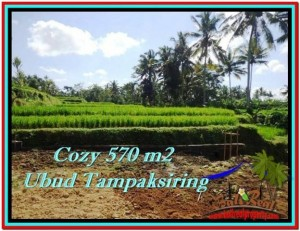 Affordable LAND FOR SALE IN Ubud Tampak Siring BALI TJUB511