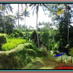 Affordable Ubud Tampak Siring BALI 570 m2 LAND FOR SALE TJUB511