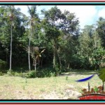 Exotic LAND FOR SALE IN Ubud Tampak Siring TJUB511