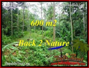 Beautiful PROPERTY 600 m2 LAND SALE IN Ubud Tampak Siring TJUB493