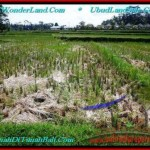 Magnificent PROPERTY LAND SALE IN UBUD TJUB500