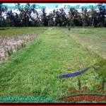 Affordable 300 m2 LAND IN UBUD BALI FOR SALE TJUB500