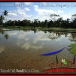 Beautiful PROPERTY Sentral Ubud 4,200 m2 LAND FOR SALE TJUB502