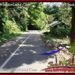 FOR SALE Beautiful PROPERTY LAND IN UBUD TJUB503
