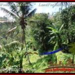 1,500 m2 LAND FOR SALE IN UBUD BALI TJUB503
