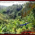 Magnificent 1,500 m2 LAND SALE IN UBUD BALI TJUB503