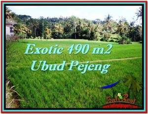Exotic LAND IN Ubud Tampak Siring BALI FOR SALE TJUB512