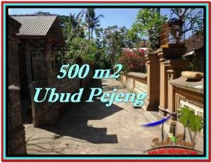 FOR SALE Affordable PROPERTY LAND IN Ubud Pejeng BALI TJUB515