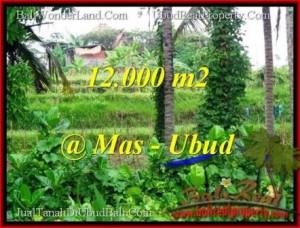 Magnificent PROPERTY Sentral Ubud 12,000 m2 LAND FOR SALE TJUB492