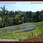 Exotic PROPERTY UBUD LAND FOR SALE TJUB505