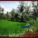 Affordable PROPERTY LAND IN UBUD FOR SALE TJUB507