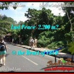 Affordable 2,200 m2 LAND IN UBUD BALI FOR SALE TJUB509