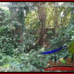 FOR SALE Beautiful 2,200 m2 LAND IN UBUD BALI TJUB509