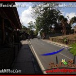 2,200 m2 LAND FOR SALE IN UBUD BALI TJUB509