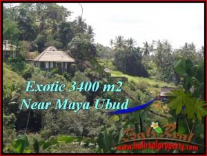 Magnificent Ubud Tengkulak BALI LAND FOR SALE TJUB514