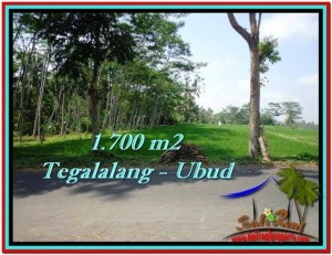 UBUD 1,700 m2 LAND FOR SALE TJUB518