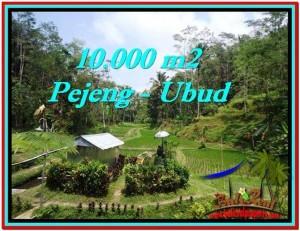 Affordable 10,000 m2 LAND SALE IN UBUD TJUB519