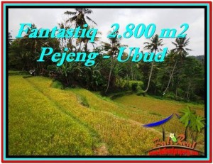 Magnificent 2,800 m2 LAND FOR SALE IN UBUD BALI TJUB521