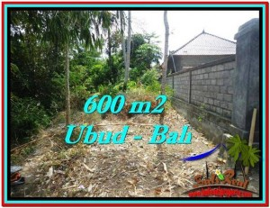 Exotic PROPERTY 600 m2 LAND SALE IN UBUD BALI TJUB523