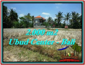 FOR SALE Magnificent PROPERTY 2,000 m2 LAND IN UBUD BALI TJUB524