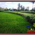Exotic UBUD BALI 490 m2 LAND FOR SALE TJUB512