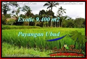 LAND FOR SALE IN Ubud Payangan BALI TJUB526