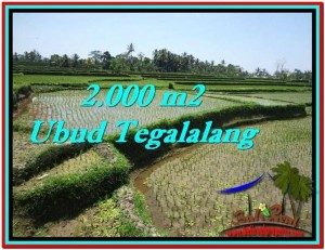Magnificent LAND SALE IN Ubud Tegalalang BALI TJUB529