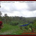 Affordable PROPERTY 2,100 m2 LAND SALE IN UBUD BALI TJUB423