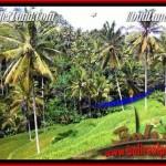 Beautiful PROPERTY Ubud Tegalalang 2,500 m2 LAND FOR SALE TJUB496