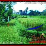 Beautiful LAND FOR SALE IN UBUD TJUB497