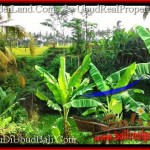 FOR SALE Exotic LAND IN Ubud Tegalalang BALI TJUB497