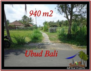 FOR SALE Beautiful LAND IN Ubud Tampak Siring BALI TJUB531