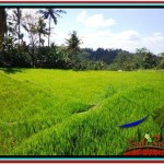Magnificent 600 m2 LAND SALE IN UBUD BALI TJUB513