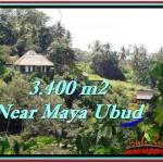 FOR SALE Affordable LAND IN Ubud Tengkulak BALI TJUB514