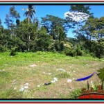 FOR SALE Magnificent PROPERTY LAND IN UBUD TJUB517