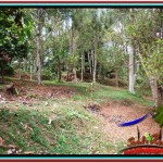 Magnificent LAND FOR SALE IN UBUD TJUB520