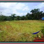 Beautiful LAND IN UBUD FOR SALE TJUB521