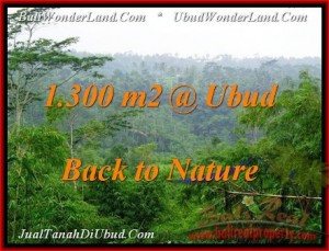 Beautiful 1,300 m2 LAND SALE IN UBUD BALI TJUB481