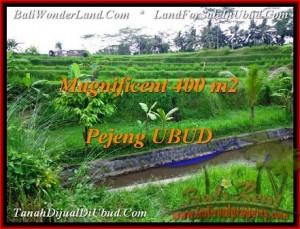 Exotic PROPERTY 400 m2 LAND IN Ubud Pejeng FOR SALE TJUB483