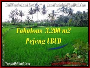 Affordable PROPERTY 3,200 m2 LAND FOR SALE IN Ubud Pejeng TJUB484