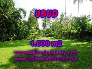 Exotic PROPERTY 1,600 m2 LAND IN Sentral Ubud FOR SALE TJUB416