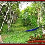 Magnificent PROPERTY 9,400 m2 LAND SALE IN Ubud Payangan TJUB526