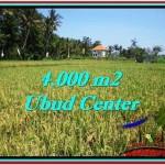 Exotic 4,000 m2 LAND SALE IN UBUD BALI TJUB527