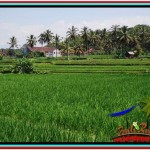 FOR SALE Magnificent 1,500 m2 LAND IN UBUD BALI TJUB528