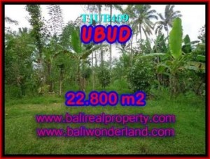 Exotic PROPERTY UBUD BALI 22,800 m2 LAND FOR SALE TJUB409